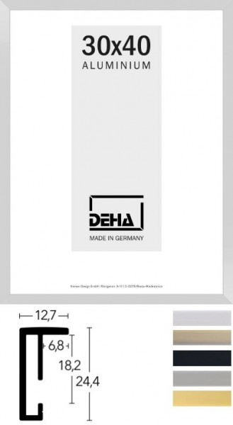 Deha Aluminium-Wechselrahmen Profil 1