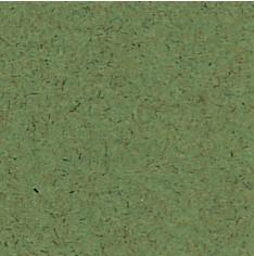 8645 Moss Green