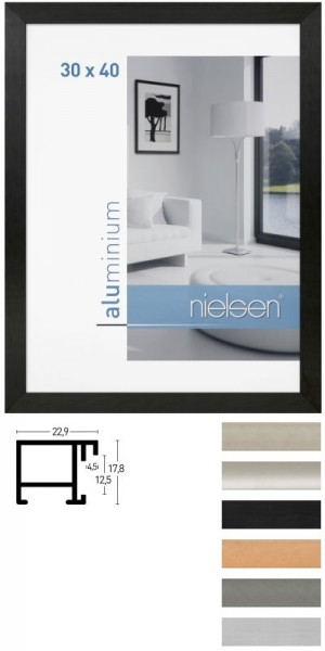 Nielsen Aluminium-Wechselrahmen CAMBIO