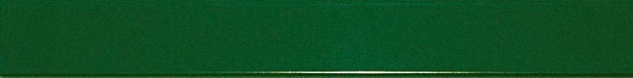 Moosgrün RAL 6005