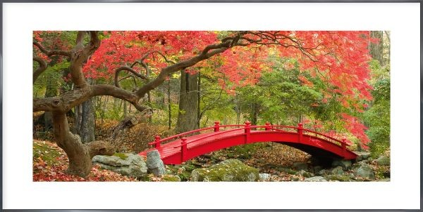 Bridge in red - Gerahmtes Bild mit Alurahmen ALPHA